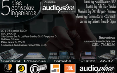 Audioplace Seminar 2014